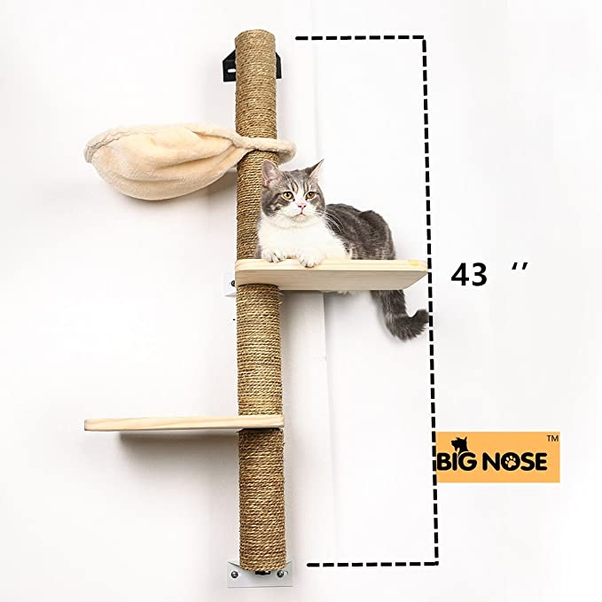 Amazon.com: Árbol de gato trepador muti niveles con ...
