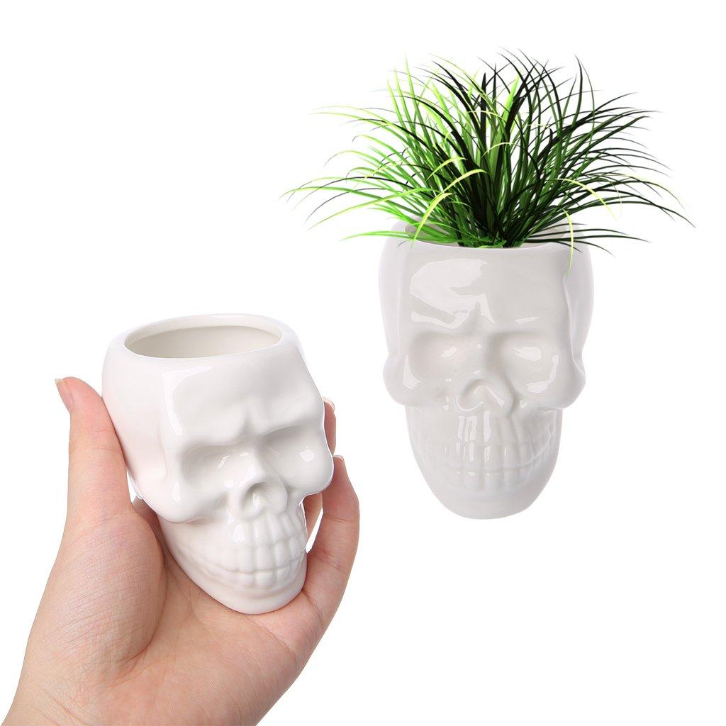 6.5/x 4/x 5/cm /Color Blanco Exing Halloween cer/ámica cr/áneo crasas jungepflanzen Cactus Planta Mini macetas/