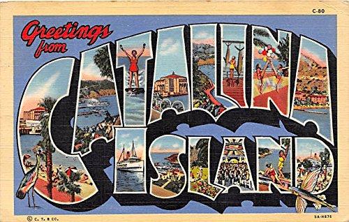Catalina Island Large Letter Postcard