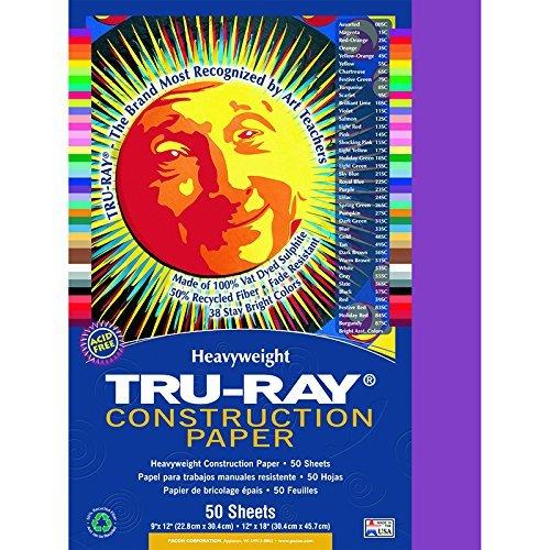 Riverside Paper Tru-Ray(R) Construction Paper, 9in. x 12in., Magenta Color: Magenta Model: PAC103000 (Fun Gmes)