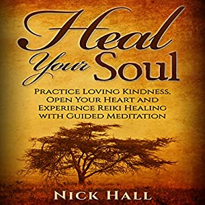 Heal Your Soul Audiobook