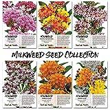 Seed Needs Milkweed Seed Collection (6 Individual Seed...