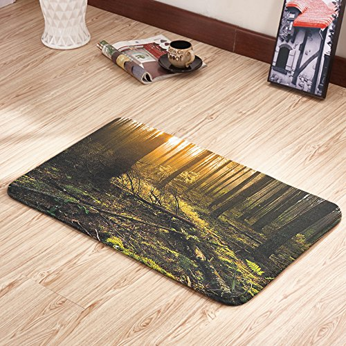Moslion Doormats Nature Misty Morning Brown Fern Green Rectangular Doormat Decorative Indoor/Outdoor Cover Rug 18 X 31 Inch (Brown Rug Ferns)