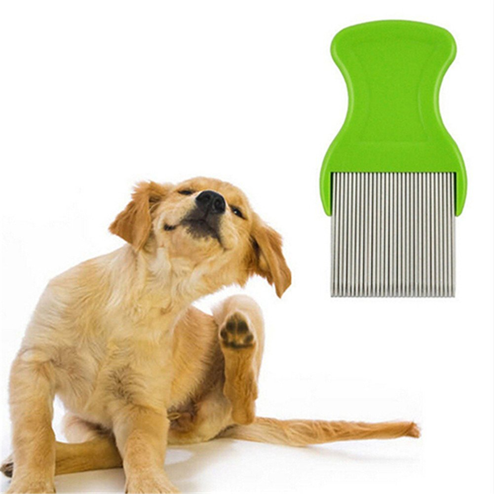 Stainless Steel Pet Cat Puppy Dog Lice Flea Removal Comb Fine Teeth Pet Louse Pet Hair Grooming Deshedding Brush by Baost (Image #2)