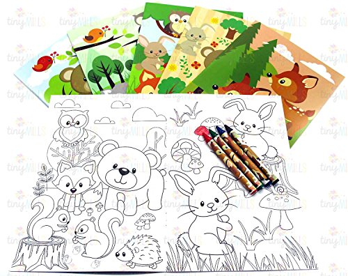 Favor Set Crayon Party (Woodland Animals Coloring Book Set with Crayons Party Favor, 12 Pack)