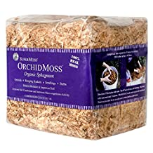 SuperMoss (22325) Orchid Sphagnum Moss Dried, Natural, 1lb Mini Bale Size: Appx. 1 lb Mini Bale Color: Natural White, Model: 7 59834 22325 2 , Home & Outdoor Store