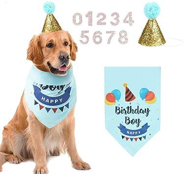 Amazon.com: AriTan - Bandana de cumpleaños para perro, con ...