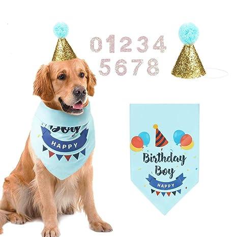 AriTan Bandana de cumpleaños para Perro, con Gorro de Cono y ...