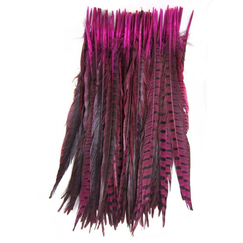 KOLIGHT Set of 100pcs Natural Dyed Pheasant Tails Feathers 14-16 inch DIY Decoration (Fuchsia)