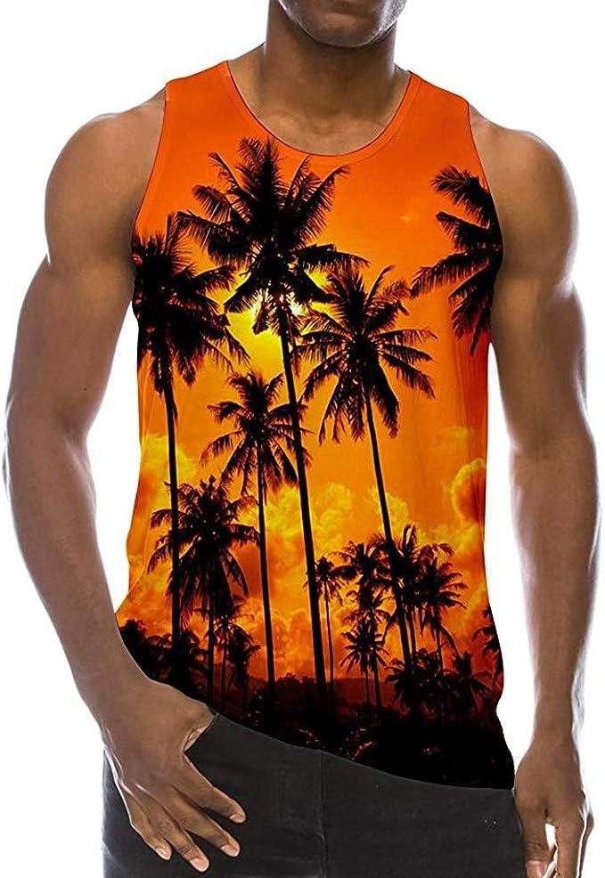 Sylar Camisetas Tirantes Chaleco De Playa para Hombre Casual Camiseta De 3D Impreso Sin Mangas Camisetas Hombre Originales Cuello Redondo Chaleco Blusa Tops Hawaiana Hombre: Amazon.es: Ropa y accesorios