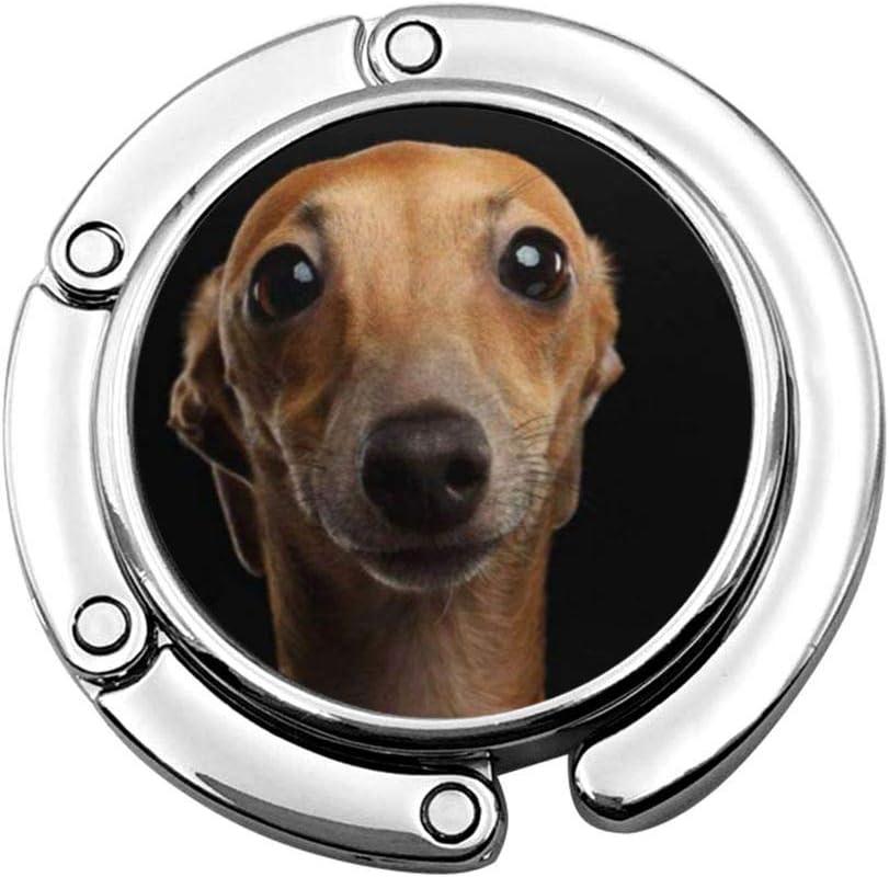 Colgador de Bolso Plegable Gancho para Monedero, Closeup Retrato de Gracioso Perro Galgo Italiano Mirando a la cámara en Vista Frontal Negra