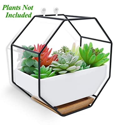 XiaZ Wall Hanging Planter Vase White Rectangular Ceramic, Iron Stand and Bamboo Saucer, Succulent Air Plants Cactus Pearls Holder Container, Flower Pots for Desk, Home Decoration: Garden & Outdoor