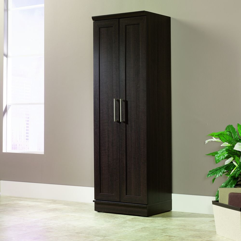 Storage Cabinet With Locking Doors Amazoncom Sauder Homeplus Basic Storage Cabinet Dakota Oak
