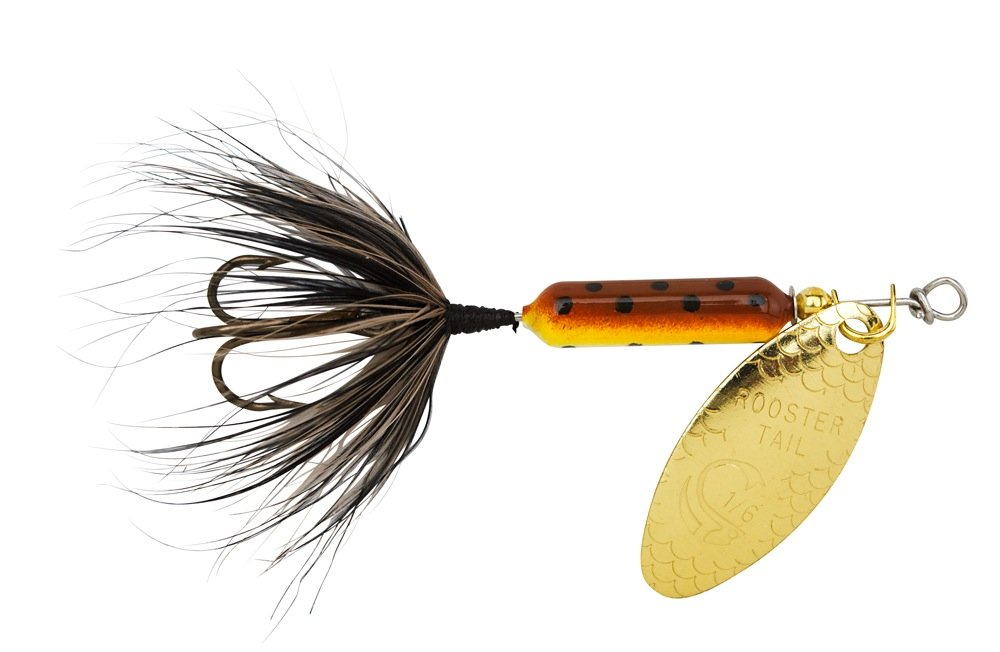 Top 10 best trout fishing lures used by expert bearcaster for Rooster tail fishing lure