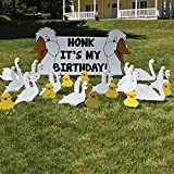 VictoryStore Yard Sign Outdoor Lawn Decorations: Birthday Yard...