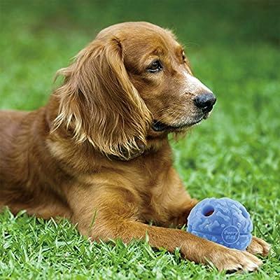 Rachael Ray(TM) Nutrish® Natural Dry Dog Food, Chicken & Veggies Recipe, 14 lbs
