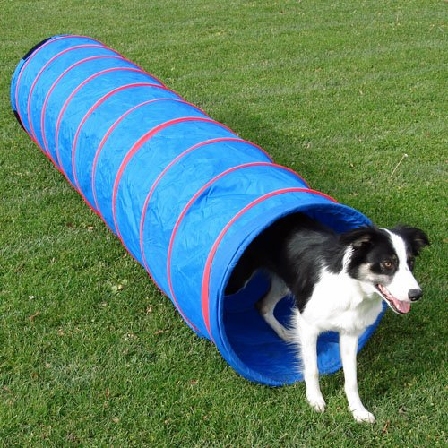 9 ft Practice Fabric Tunnel w/22'' diameter and Carry Bag by Affordable Agility