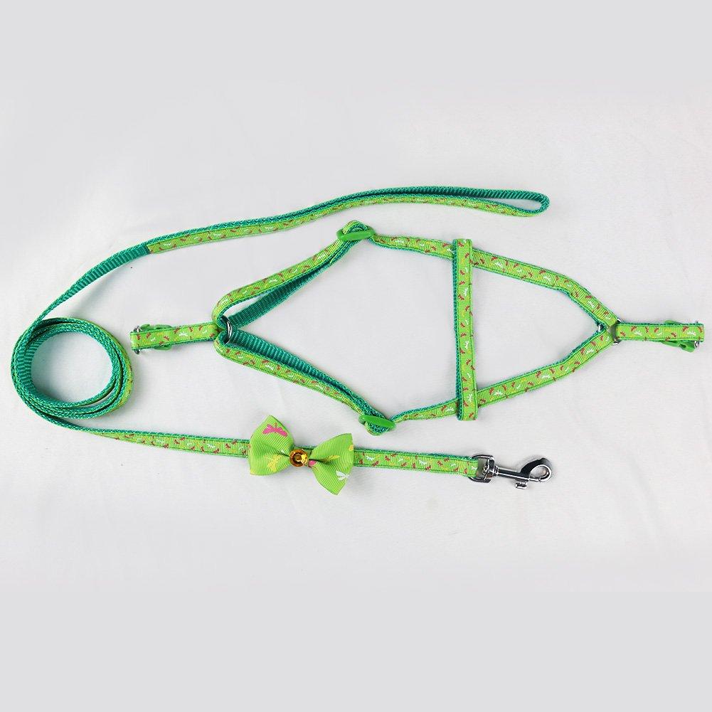 Pettorina Cane con Guinzaglio di Nylon, Durevole Regolabile Imbracatura per Cani, Guinzaglio per Portare il Cane a Passeggio, Verde