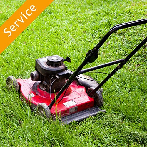 Lawn Mowing -With Edging – Medium Lawn (5,000-20,000 sq ft)