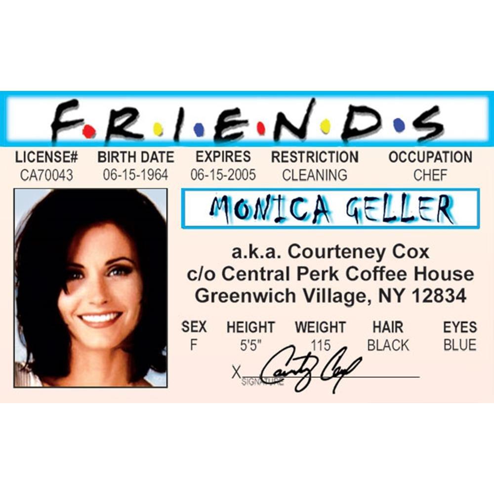 Signs 4 Fun Njaidm Monicas Drivers License