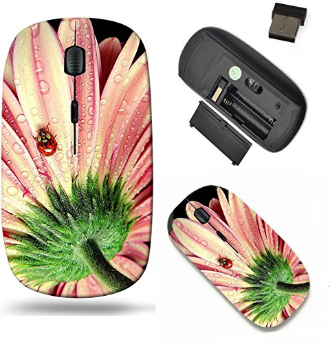 Liili Wireless Mouse Travel 2.4G Wireless Mice with USB Receiver, Click with 1000 DPI for notebook, pc, laptop, computer, mac book IMAGE ID 33148286 Ladybug on my ()