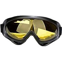 lahomia Skidglasögon, snowboard motorcykelglasögon för unisex, snöglasögon med