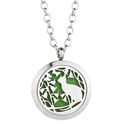Amazon essential oil diffuser necklace cat perfume stainless essential oil diffuser necklace cat perfume stainless steel magnetic locket pendant aromatherapy jewelry for aloadofball Images