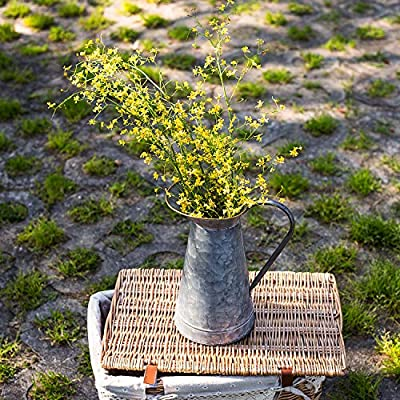 Lanperle Decorative Galvanized-Metal Pitcher   Garden Decoration   Gardening Gift/Souvenir   Metal Flower Pot/Vase Decor: Home & Kitchen