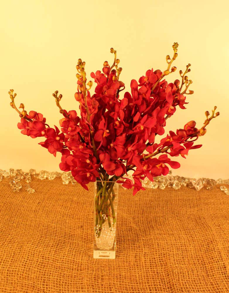 Athena's Garden Fresh Deep Red Mokara Cut Orchids Bunch with Glass Vase