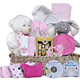 The Ultimate Baby Basket (For Baby Girls)