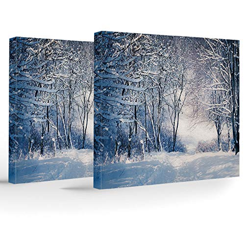 Artwork Wall Art Canvas Prints Picture,Winter,2 Panels Stretched Canvas Framed Wall Art,Alley in Snowy Forest Cold Freezing Weather Rural Nature Outdoors Woodland Decorative ()