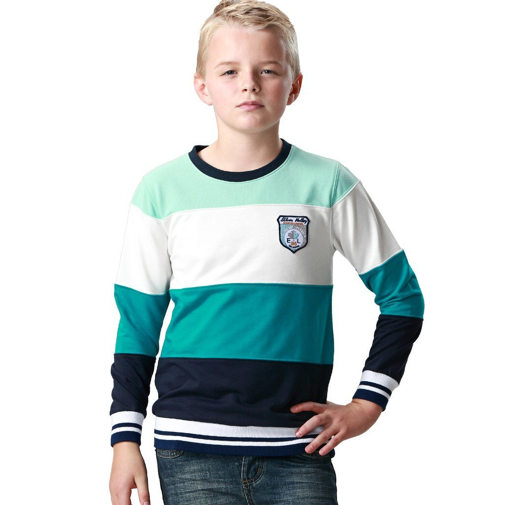 Leo&Lily Boys' Casual Color Panels Fleece Sweatshirt Activewear T-Shirt (Green Band,14) by Leo&Lily