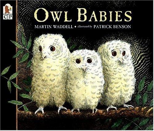 Owl Baby (Owl Babies)