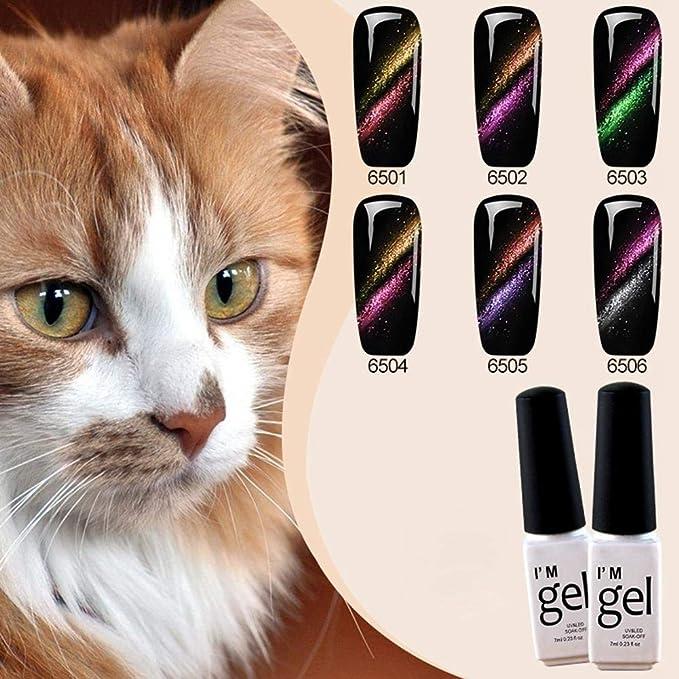Sue-Supply Esmalte de uñas Gel de Ojos de Gato Esmalte de uñas Manicura Pegamento de uñas: Amazon.es: Hogar