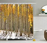Ambesonne Farm House Decor Collection, Aspen Trees with Golden Leaves in Snow, Forest in Early Winter Time Landscape, Polyester Fabric Bathroom Shower Curtain, 75 Inches Long, Gold White Beige