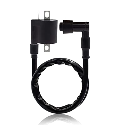 Ignition Coil for Chinese 50cc 90cc 110cc 125cc 200cc 250cc Motorcycle ATV Quad Dirt Bike: Automotive