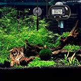 Windbells Aquarium Thermometer LCD Digital Aquarium Thermometer with Suction Cup Fish Tank Water Terrarium Temperature for Fish and Reptiles Like Lizard and Turtle