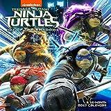 Teenage Mutant Ninja Turtles Calendar 2017 -- Deluxe TMNT Wall Calendar (12x12)