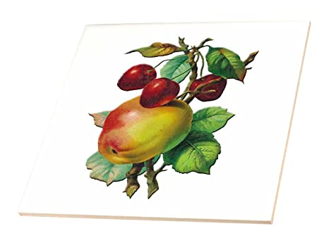 Bln victorian fruits and flowers collection vintage mele su un