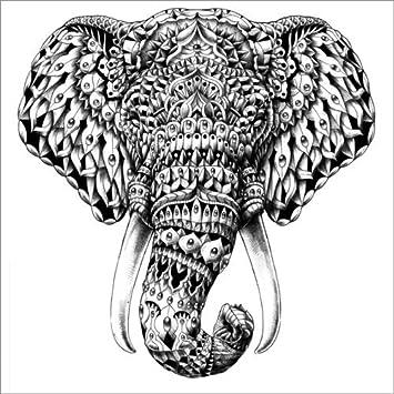 Posterlounge Forex 30 x 30 cm: Ornate Elephant Head di BIOWORKZ