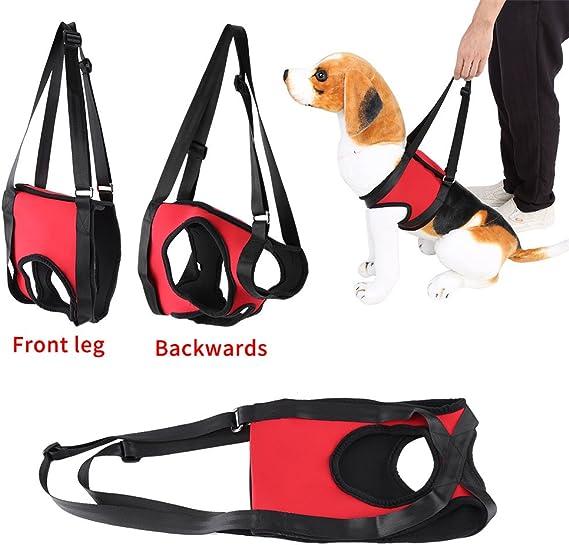 per sollevare cani anziani o feriti Rear Leg-M Pettorina con supporto anteriore e posteriore per cane