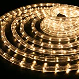 WYZworks 100 feet 1/2'' Thick WARM WHITE Pre-Assembled LED Rope Lights with 10', 25', 50', 150' option - Christmas Holiday Decoration Lighting | UL Certified