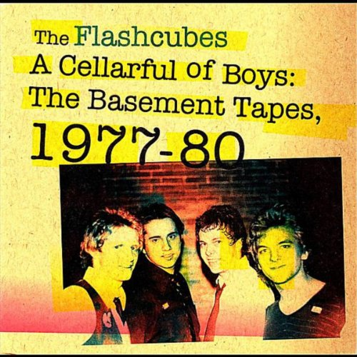 I Don't Want To Break Your Heart By The Flashcubes On