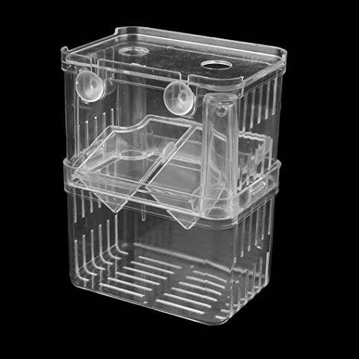 Amazon.com : eDealMax plástico acuario capas dobles criadero ...