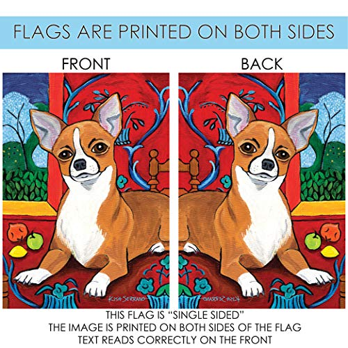 Amazon.com: Toland Home Garden muttisse Chihuahua 28 x 40 ...