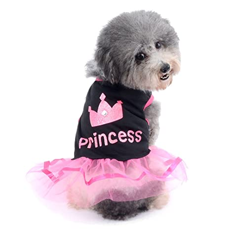 Ranphy Falda pequeña para Perro, Gato, Chihuahua, Ropa para ...