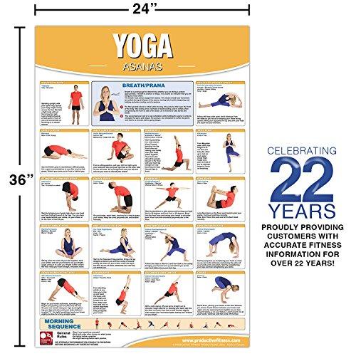 Yoga Asana PosterChart Laminated Poster Chart