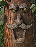 Birdfeeder Tree Face Sculpture Outdoor Yard Garden Hugger Decor