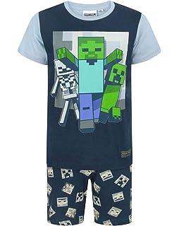9e51d2763 Minecraft Camiseta para niño  Amazon.es  Ropa y accesorios