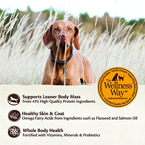 Wellness Core Natural Dry Grain Free Puppy Food Chicken